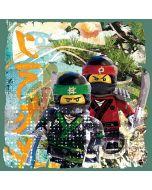 Платно от канава колаж Lego Ninjago Lloyd и Kai