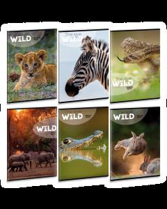 Ученическа тетрадка A4, 40 листа ARS UNA THE EYES OF THE WILD - Различни видове