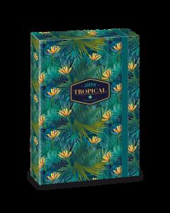 Tropical Florida кутия А4