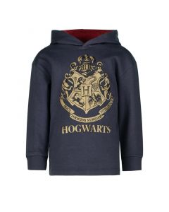 Суитчър Harry Potter