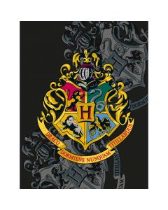 Поларено одеяло Harry Potter герб 130х170 см