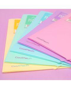 Папка с ластик PVC